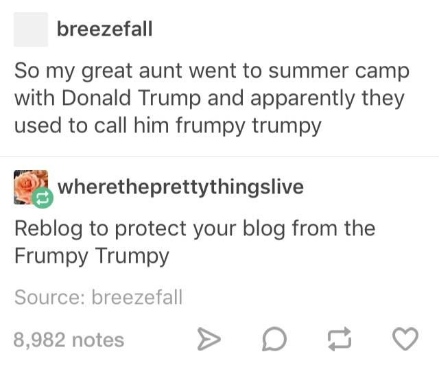 Tumblr. Summer camp with donald trump. Frumpy trumpy.