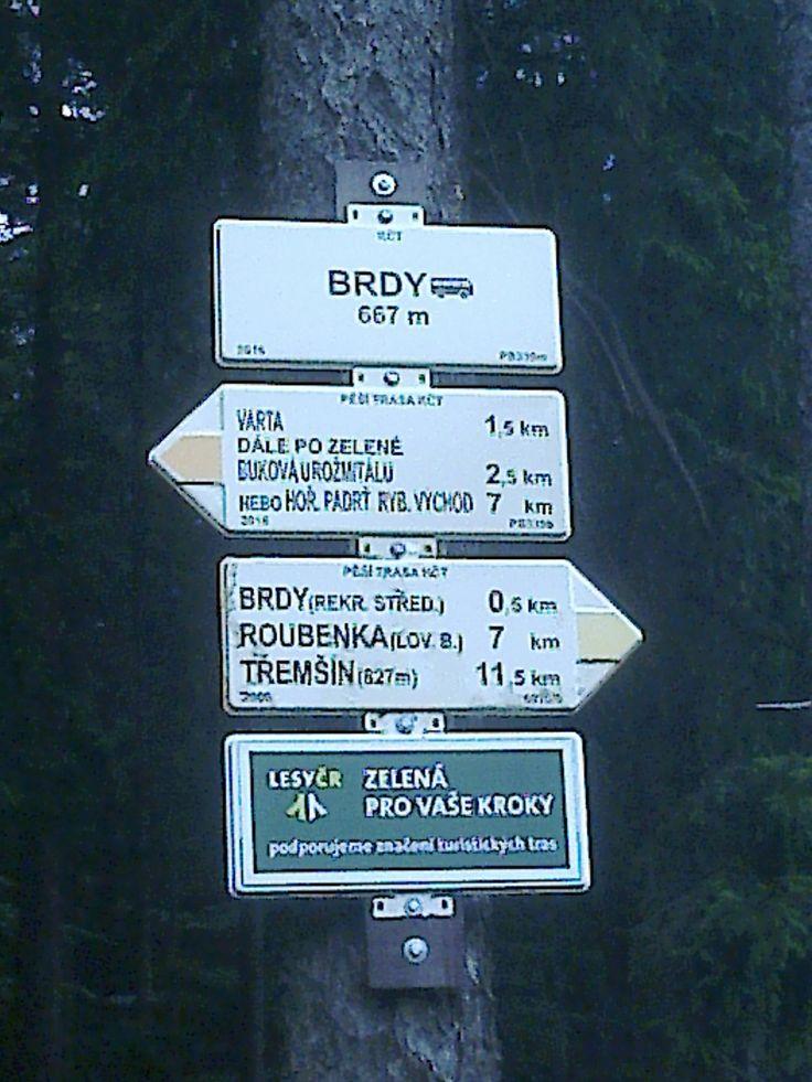Brdy | Czech republic | Cycling | Summer camp