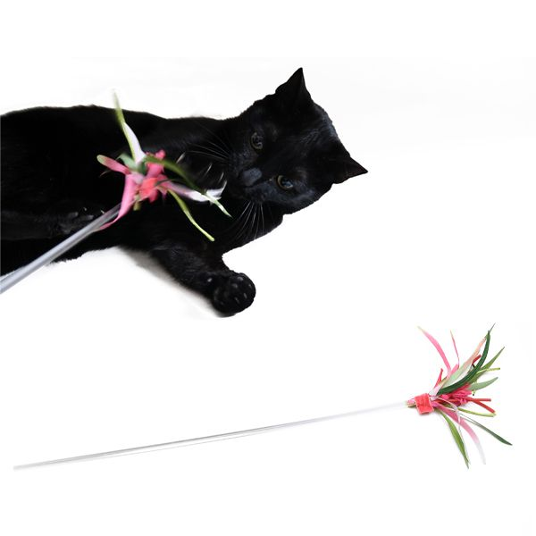 .  design4paws  . Tropical Flower Wand .  A premium quality handmade toy for your precious felines! http://www.design4paws.com/?product=tropical-flower-wand
