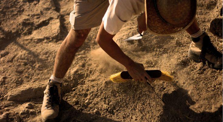 Tajemnicza komora w grobie Tutenchamona.  Grób królowej Nefertiti?  * * * * * * www.polskieradio.pl YOU TUBE www.youtube.com/user/polskieradiopl FACEBOOK www.facebook.com/polskieradiopl?ref=hl INSTAGRAM www.instagram.com/polskieradio