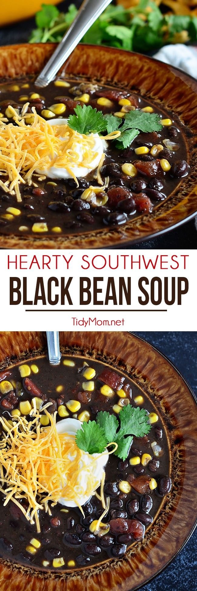 This Hearty Southwest Black Bean Soup is full of flavor, you'll never miss the meat! Ready for the table in 30 minutes, but it's even better the next day!! Get the easy recipe at TidyMom.net