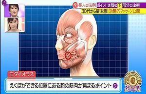 30代以降はたるみ注意!「顔の下半分」を鍛えて誰でも美人顔に近づける方法 | 30歳から美しく生きるヒント!