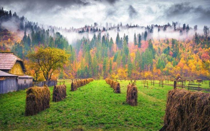 Autumn, Φθινόπωρο