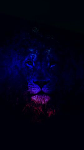 Mighty Lion Iphone Wallpapers In 2019 Pinterest Wallpaper