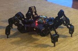 Hexapod Robot Chassis