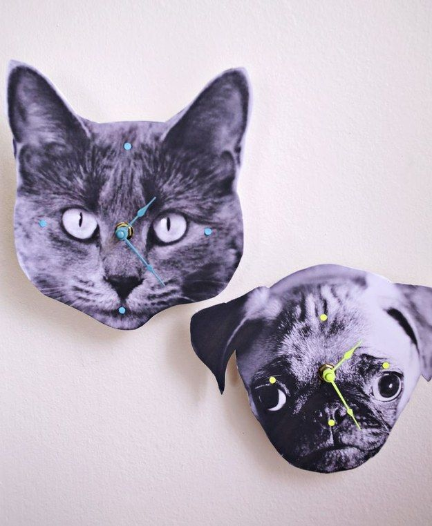 Turn your pet's face into a clock. | 35 DIY Projects That Are Just F@*king Awesome