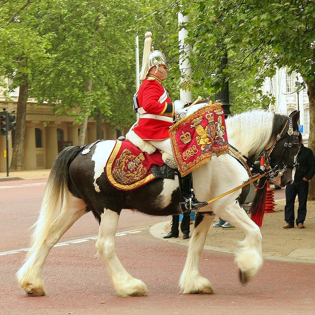 Clydesdales and Shires are used by the British Household Cavalry as drum horses, leading parades on ceremonial and state occasions. The horses are eye-catching colours, including piebald, skewbald and roan. To be used for this purpose, a drum horse must stand a minimum of 17 hands (68 inches, 173 cm) high. They carry the Musical Ride Officer and two silver drums weighing 56 kilograms (123 lb) each. Wikipedia