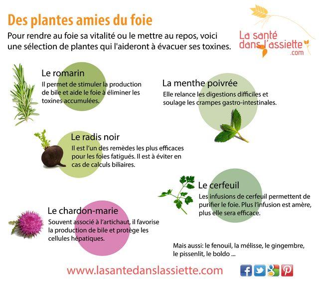 La Santé dans l'Assiette: Fiche pratique - Des plantes amies du foie