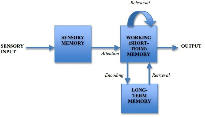 module information processing theory of learning Primacy-recency (serial position) effect: essential in teaching and learning as i have read the information in module 8 about information processing, i have learned.