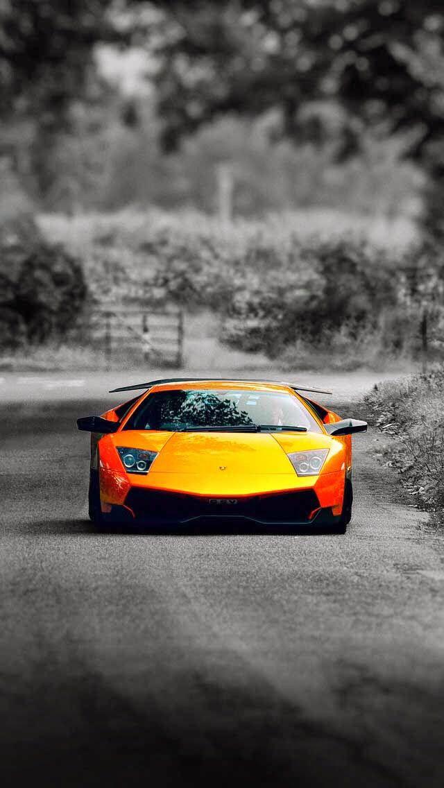 Elegant Lamborghini