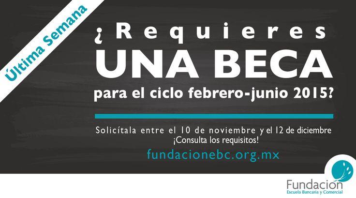 ¡Aprovecha estos últimos días para solicitar una beca de #FundaciónEBC! Ingresa a www.fundacionebc.org.mx y consulta los requerimientos.