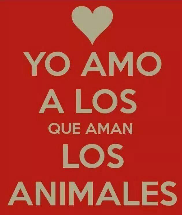 I Love animals #NoSinMiPerro