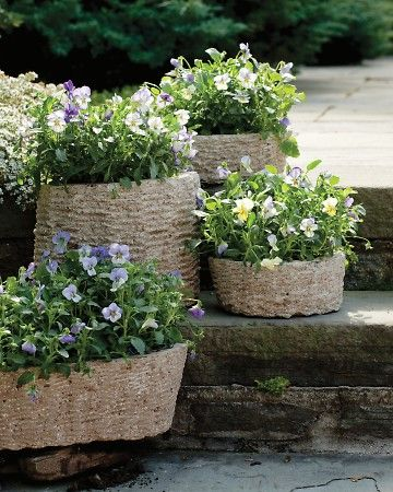 A hypertufa pot in a wicker basket - From Martha Stewart. Pretty.