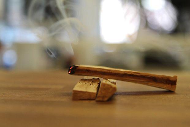 """El humo de las astillas del árbol palo santo, también llamado """"madera sagrada"""", se usa como un efectivo repelente de energías negativas y un buen detonador de la vitalidad del cuerpo."""