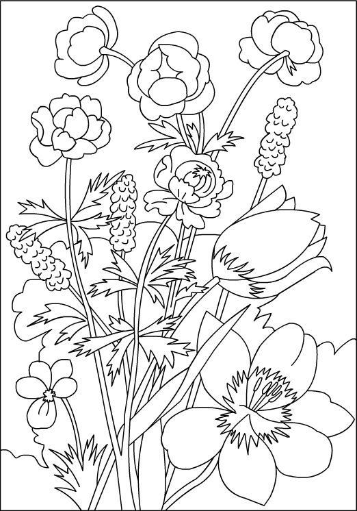 FLOWERS * Coloring page  Willem van Leen inspiration