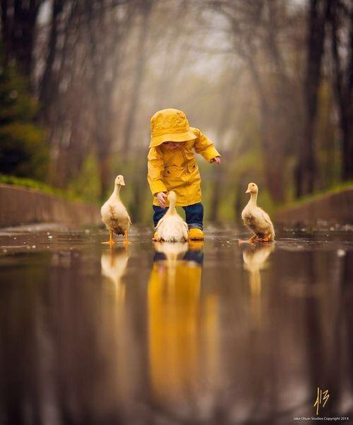 Little boy splashing in water with ducks + Yellow + Spring
