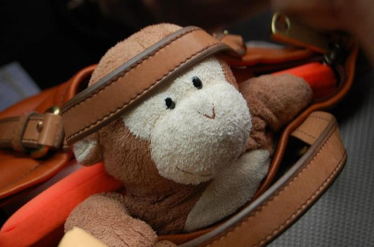 Lost on 05 Jun. 2016 @ United States. Lost stuffed TY monkey wearing a purple Williams T-shirt. Could be lost anywhere in the eastern or southern US. $100 Reward!!!! Visit: https://whiteboomerang.com/lostteddy/msg/knon3c (Posted by Jenni on 22 Jul. 2016)