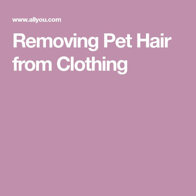 Removing Pet Hair from Clothing