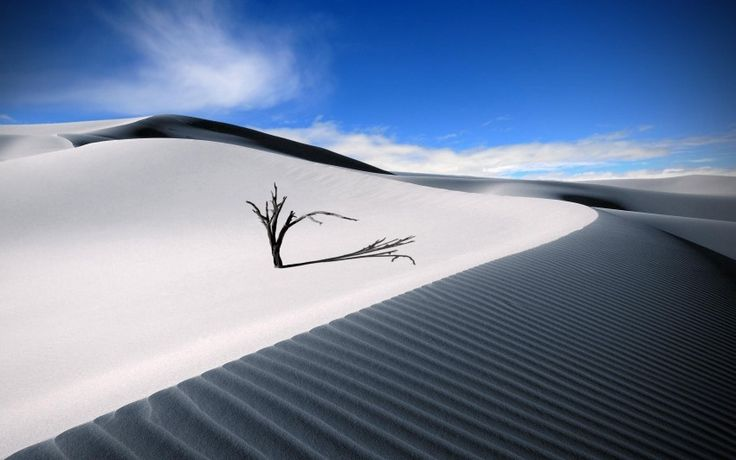 Desert Sand Dune Download free addictive high quality photos,beautiful images and amazing digital art graphics about Nature / Landscapes.
