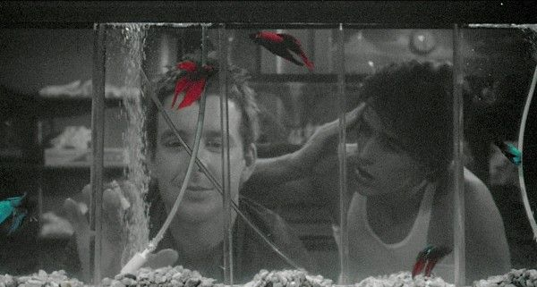 Rumble Fish (Бойцовая рыбка) (1983)
