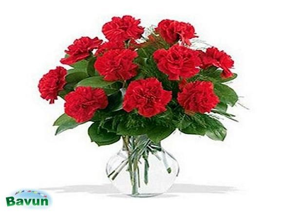 Online Flowers and Gifts Delivery in Mumbai Express you emotions in floral way send them online to your love ones ,floristsmumbai.com is the online florists provides online ...
