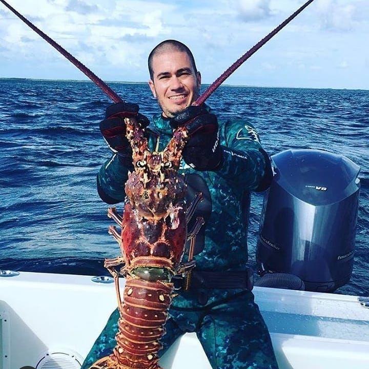 26++ Monster lobster information