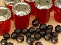 Muscadine Jelly - Easy steps for putting up this sweet and sour fruit.