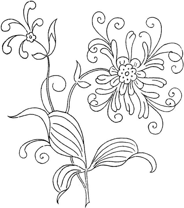 Free Colouring Pages Flowers Printable : 36 best flower coloring sheets images on pinterest