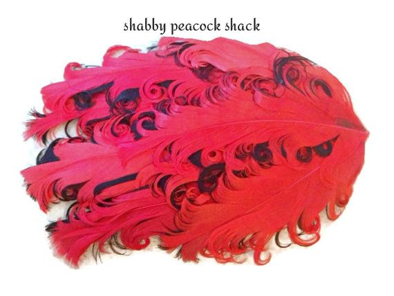 Red Black Curly Nagorie Feather Pad, Goose Feather Pad for Headband, DIY Baby Headbands, Feather Pad, Wholesale Headband Supplies