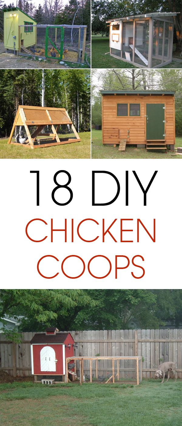 18 amazing diy chicken coop projects diy and crafts diy for Can ducks and chickens share a coop