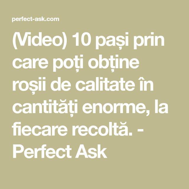 (Video) 10 pași prin care poți obține roșii de calitate în cantități enorme, la fiecare recoltă. - Perfect Ask