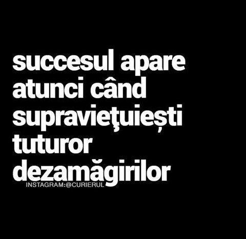 succesul apare atunci cand supravietuiesti tuturor dezamagirilor