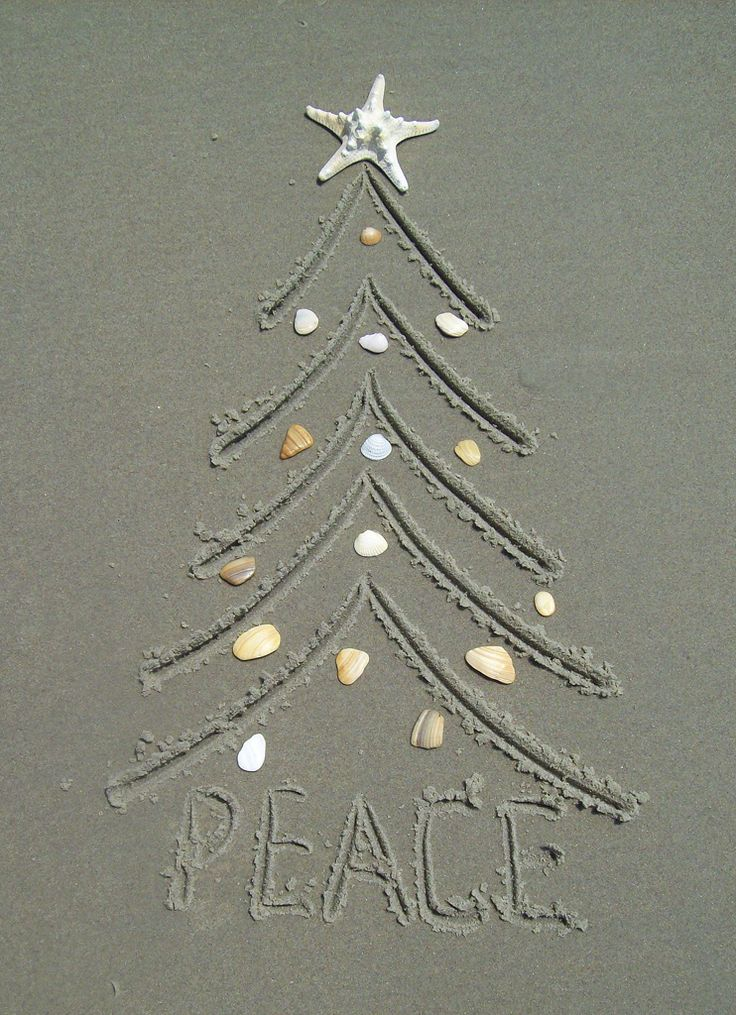 Ocracoke Island Realty 2012 Christmas card. This photo was entered in the 2012 Ocracoke Island Photo Contest.