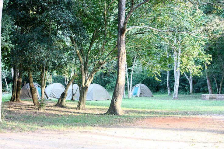 Queen Elisabeth #camping #site #Uganda. #traveller #adventure.