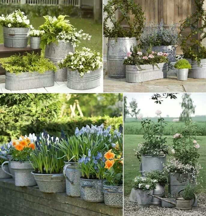 Cute garden ideas my secret garden pinterest container garden potted plants and repurpose - Galvanized containers for gardening ...