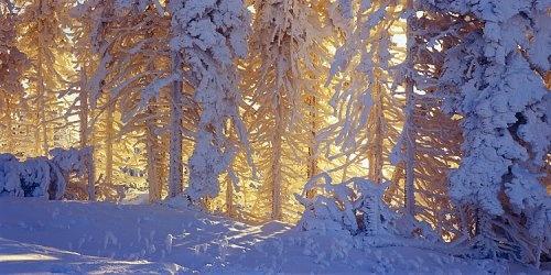 winter in Beskidy, Poland.