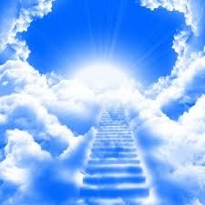 """""""Fluye con la luz, fluye con la paz, fluye con la armonía. Te amamos y bendecimos cada día de tu vida.""""   Somos los ángeles de la Paz y del Equilibrio Marianela Garcet - Los Ángeles te hablan: Escúchalos 1"""