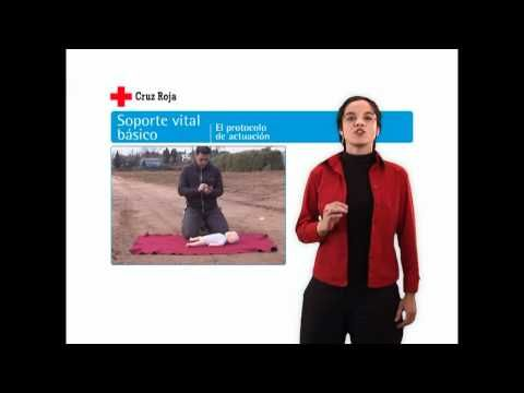 Guía de primeros auxilios. 03 Soporte vital básico. 03/13