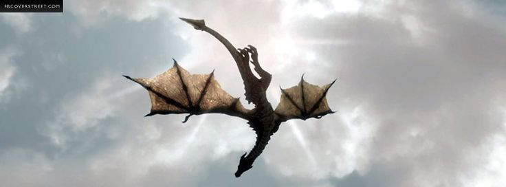 Flying Dragon: 17 Best Images About Dragons On Pinterest