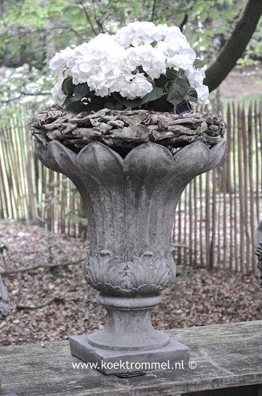tuinvaas in tulpvorm