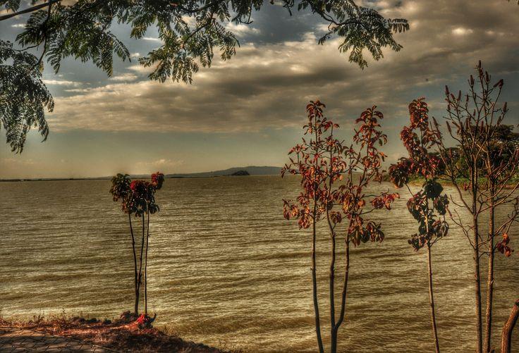 Tana lake