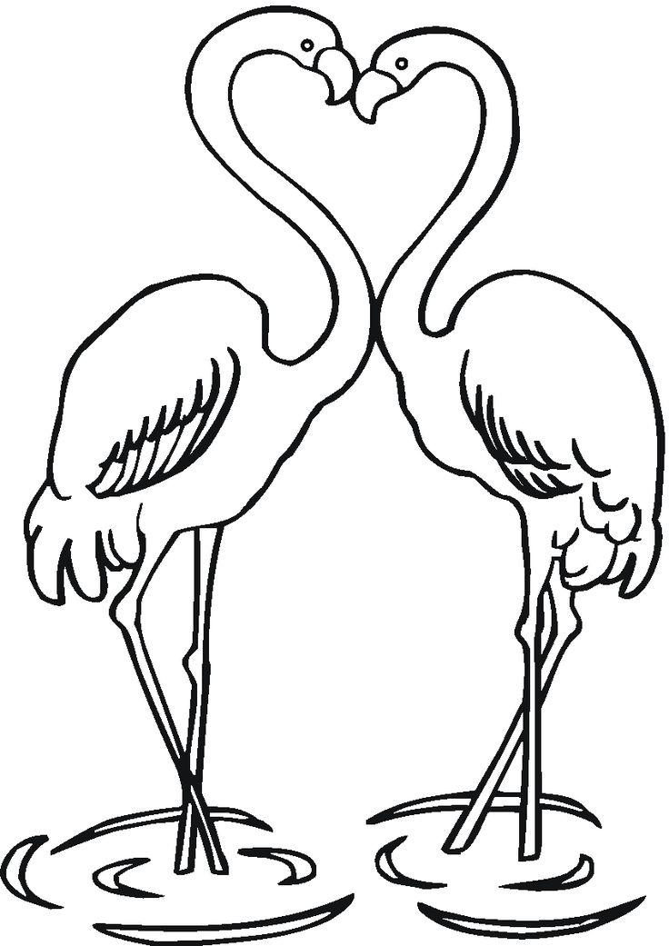 Best 25 Flamingo color ideas only on Pinterest Flamingo
