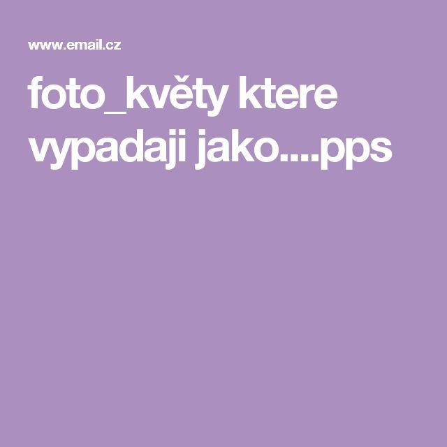 foto_květy ktere vypadaji jako....pps