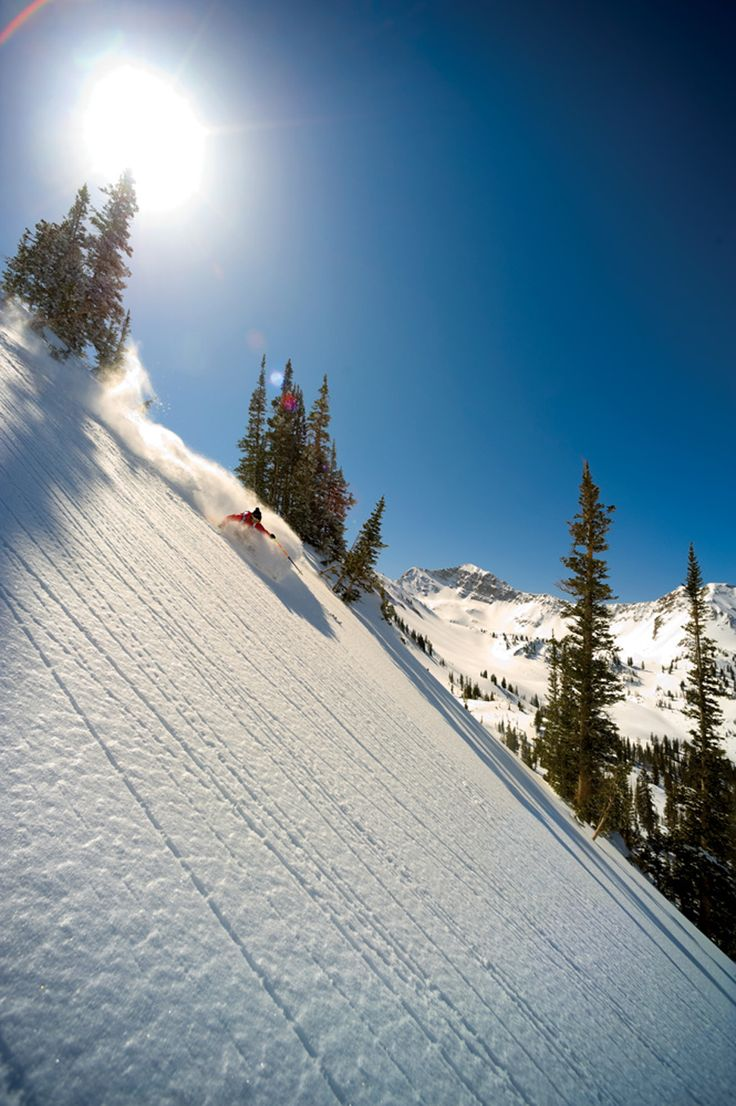 """The Bird""...Best ski resort reviews of 2012-13 | Ski Resort Guide West | SKI Magazine"