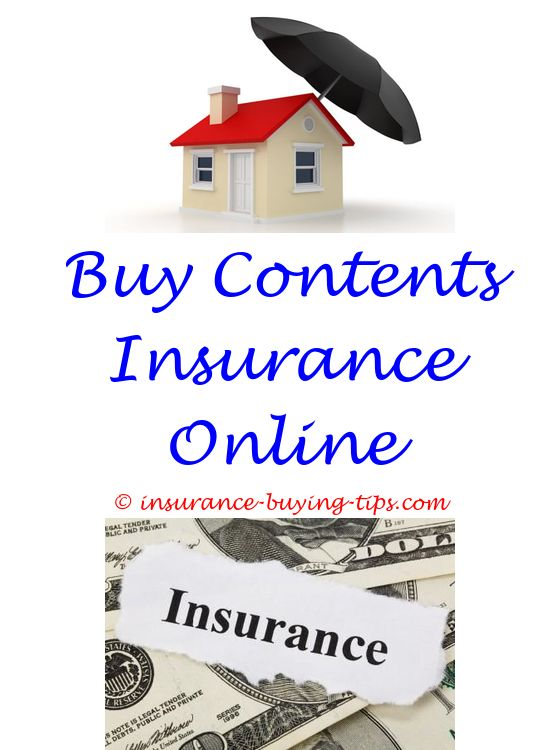 New Car Insurance Quote Term Life Insurance And Term Life Stunning Travel Life Insurance Quotes