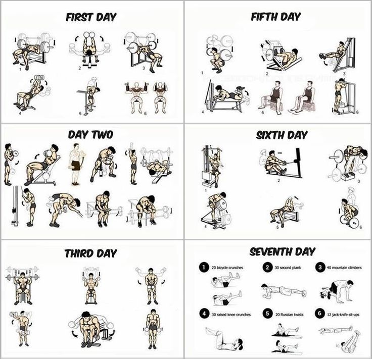 Day work out plan with off on the th workouts