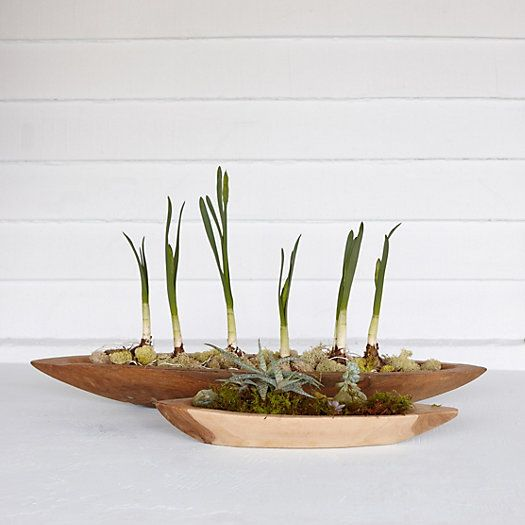 Hand Carved From Sustainable Teak For One Of A Kind Appeal, These Smooth,  Boat Shaped Planters Make A Rustic Centerpiece When Filled With An Abundant Awesome Ideas