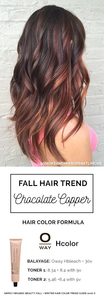 Fall hair color for brunettes! Chocolate brown hair color with copper highlights and a hint of violet lowlights. Hair by: Holly Wiitala, Smoke & Mirrors Salon (Baltimore, MD) with Oway Organic Hair Color #Oway #OrganicHairColor