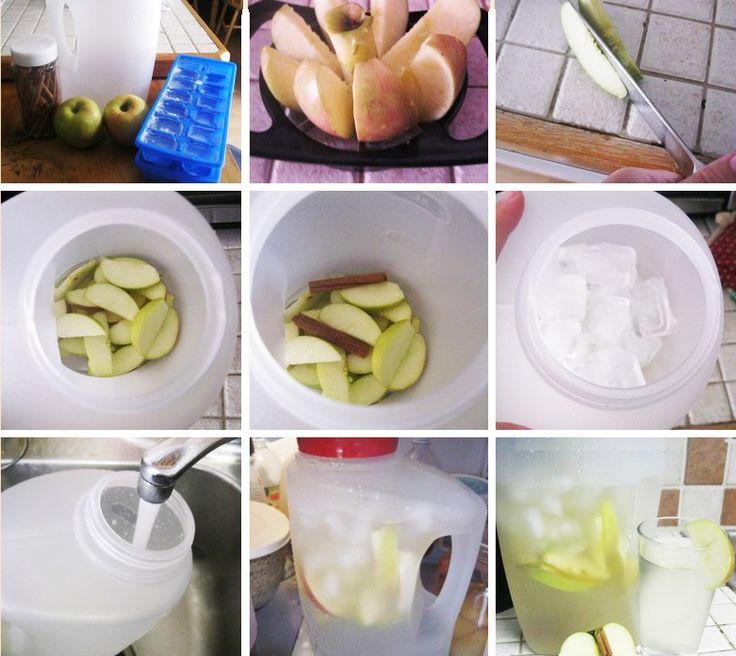 Agua de manzana y canela Vida Lucida