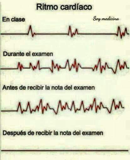 Ritmo cardiaco en la escuela